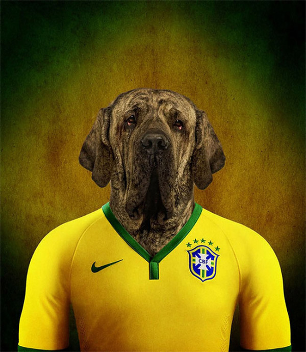 Dogs-of-World-Cup-Brazil-2014-1-600x690