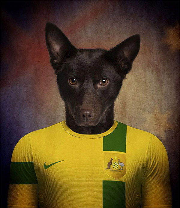 Dogs-of-World-Cup-Brazil-2014-11-600x690