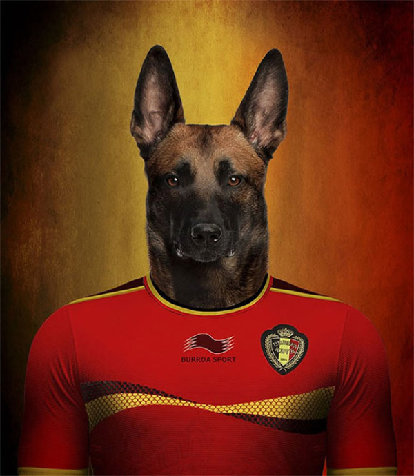 Dogs-of-World-Cup-Brazil-2014-12-600x690