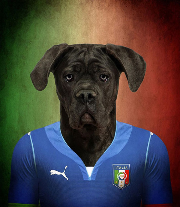 Dogs-of-World-Cup-Brazil-2014-13-600x690