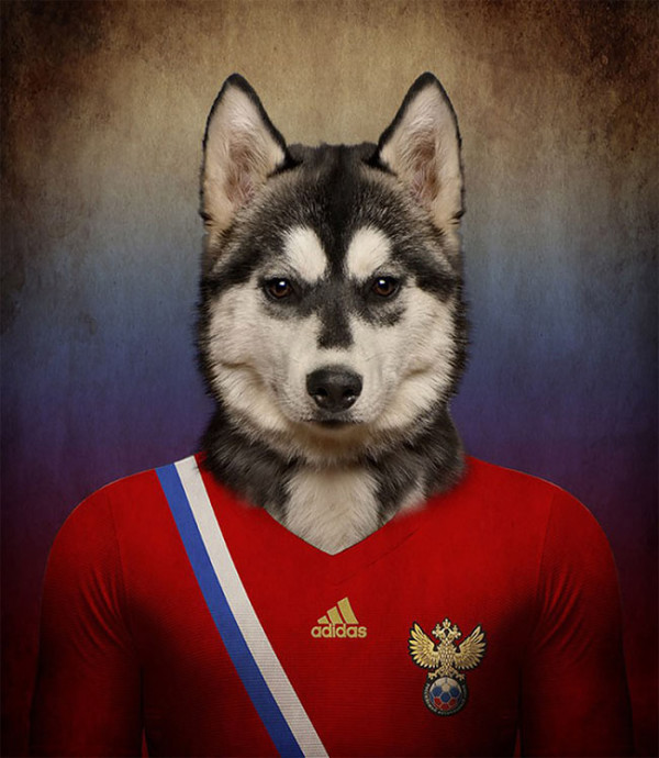 Dogs-of-World-Cup-Brazil-2014-15-600x690