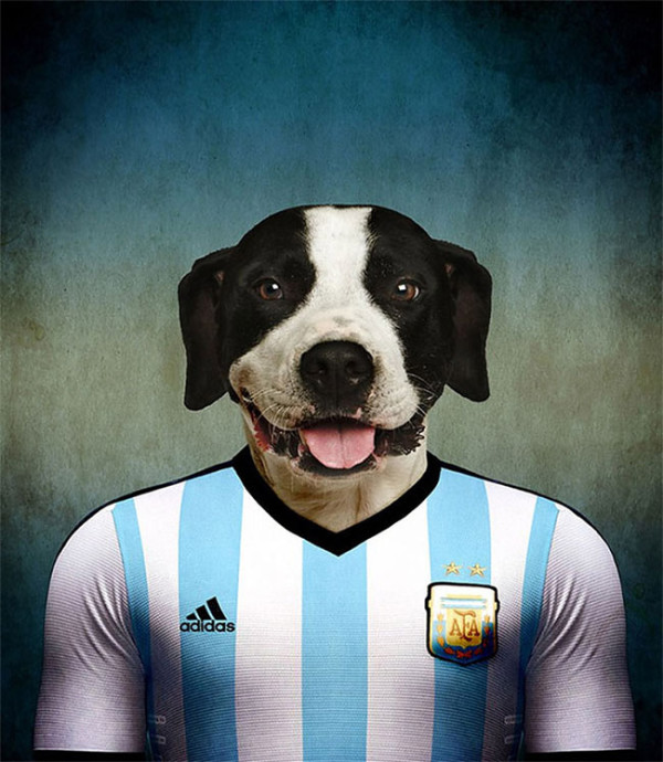 Dogs-of-World-Cup-Brazil-2014-2-600x690