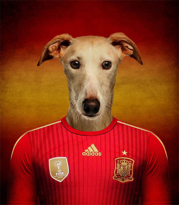 Dogs-of-World-Cup-Brazil-2014-4-600x690