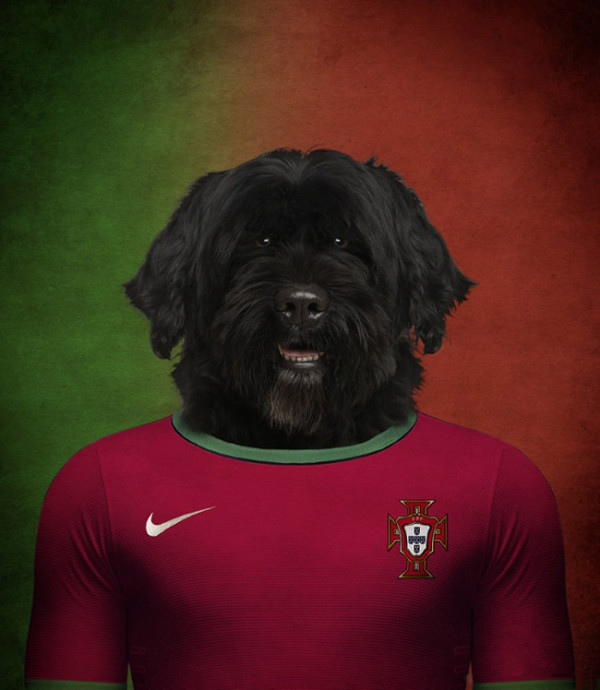 Dogs-of-World-Cup-Brazil-2014-6-600x690