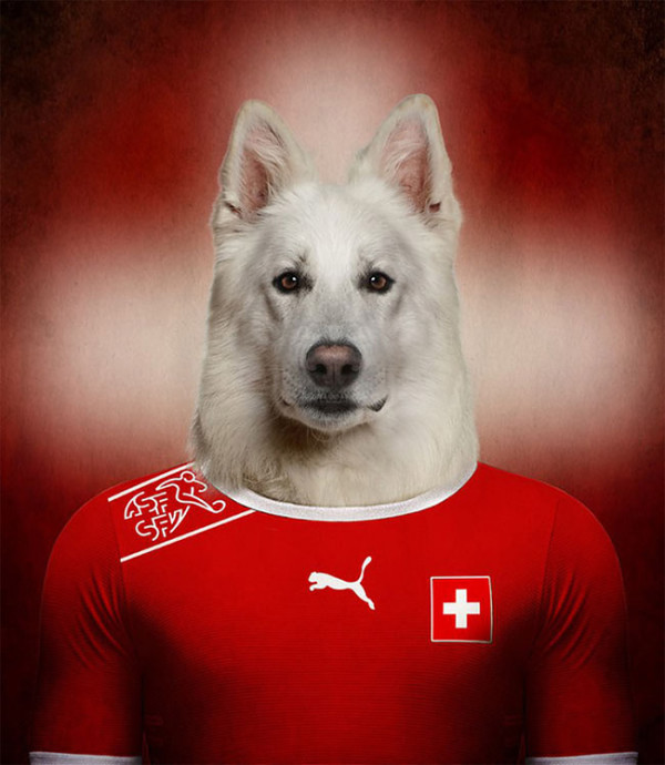 Dogs-of-World-Cup-Brazil-2014-7-600x690