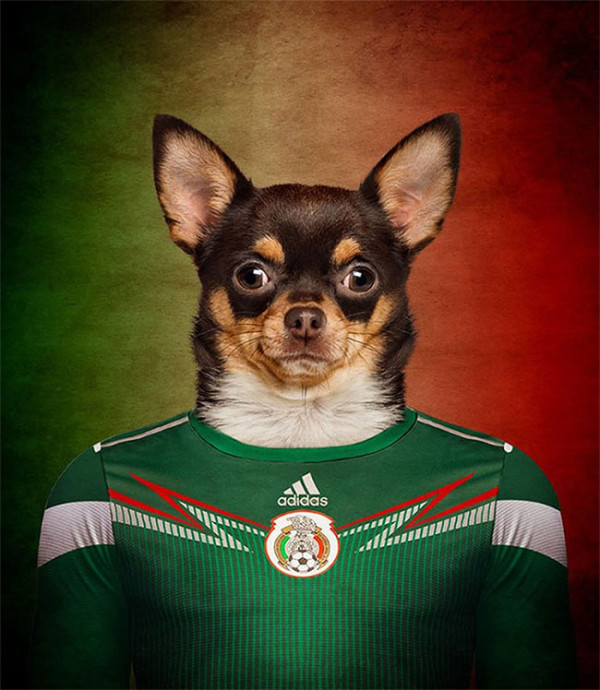 Dogs-of-World-Cup-Brazil-2014-9-600x690